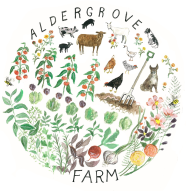Beautiful logo by Sarah Burwash